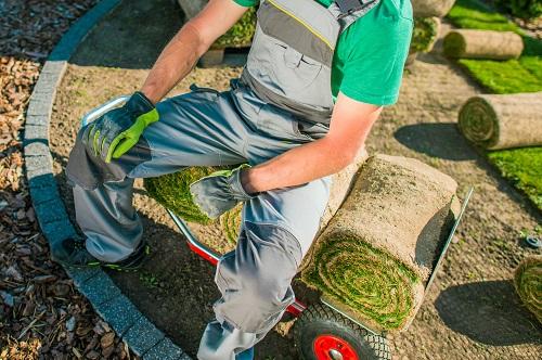 paysagiste dans les Alpes-Maritimes