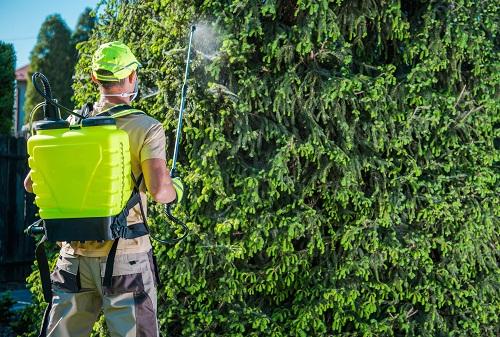 la prestation de jardinier à Aix-en-Provence